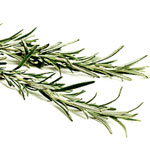 Metabolic Medical center RecipesRosemary Skewers