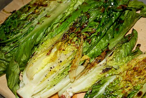 romaine hearts wm grilled romaine lettuce grilled lettuce 085 grilled ...